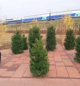 accident-tgv-jardin-arbres-souvenir-14-novembre-2016